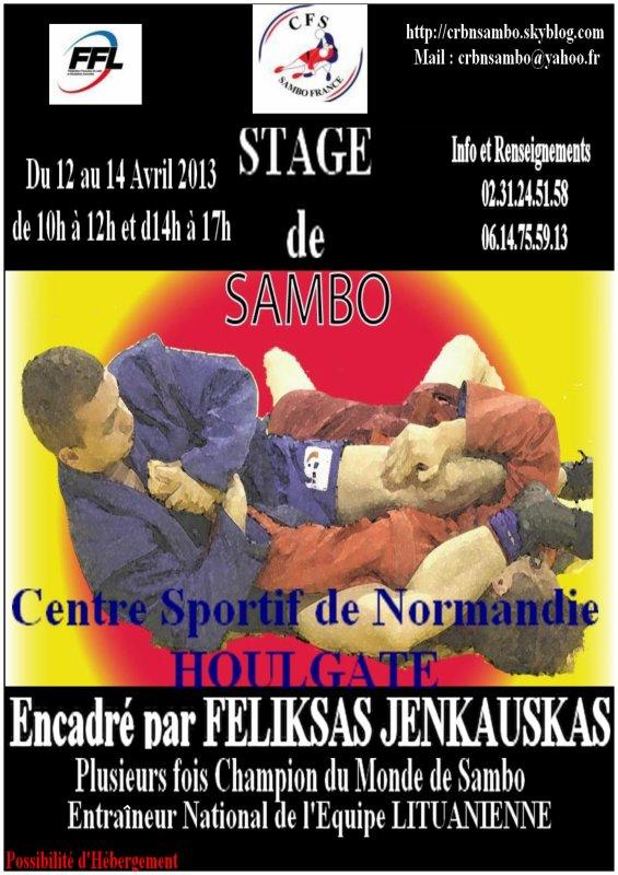 Stage de Sambo Sportif à Houlgate les 12 ,13,14 Avril 2013