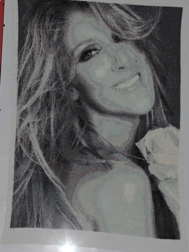 bonjour voici une broderie que j'ai faites pour ma cousine qui est fan de Céline Dion