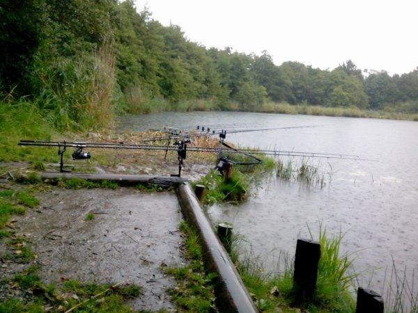 Beaucoup de pluie mais pas beaucoup de poissons!