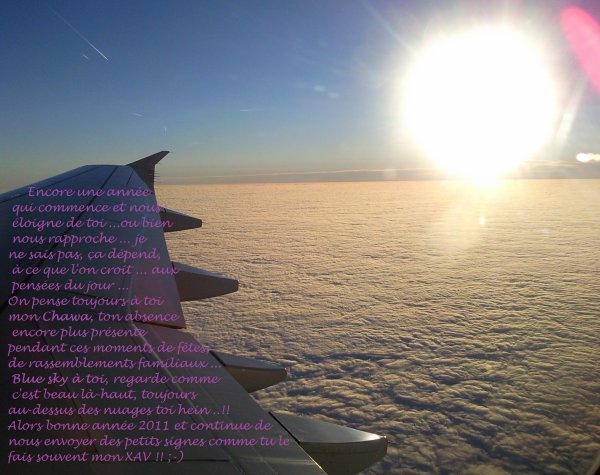 Bonne année 2011 ..!! ;-) ***
