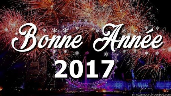BONNE ANNEE 2017 !!!!