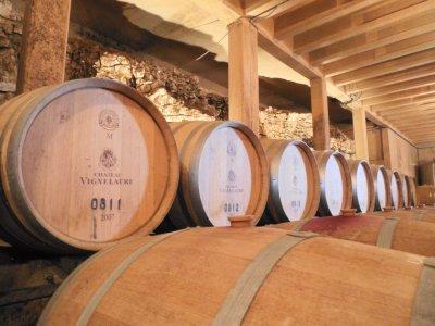 Vignelaure, une histoire provençale...
