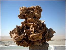 la rose du sable