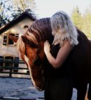 Photo de indo-cheval