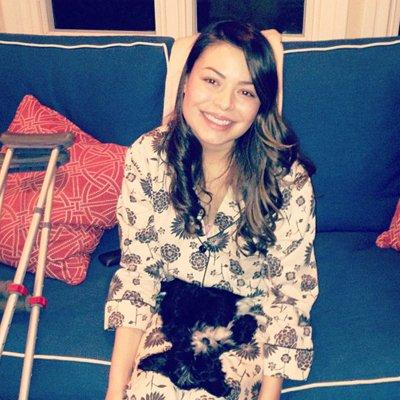 Dino chien chanteur/ Pop Star Puppy 2014