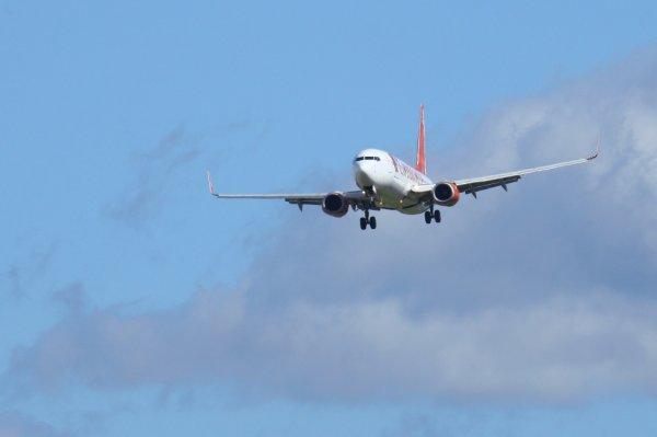 CORENDON AIRLINES  BOEING 737-800  TC-TJL
