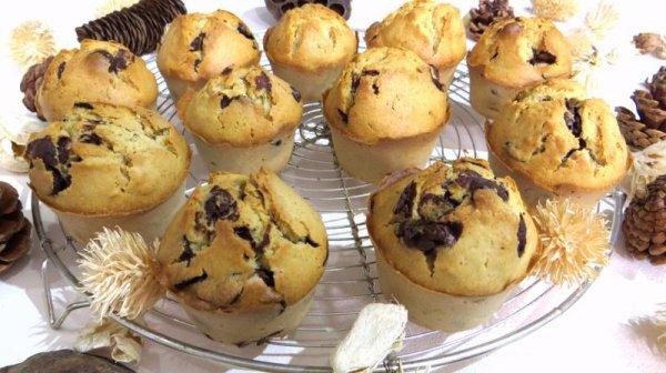 """"""" Muffins au chocolat, sans lactose """""""