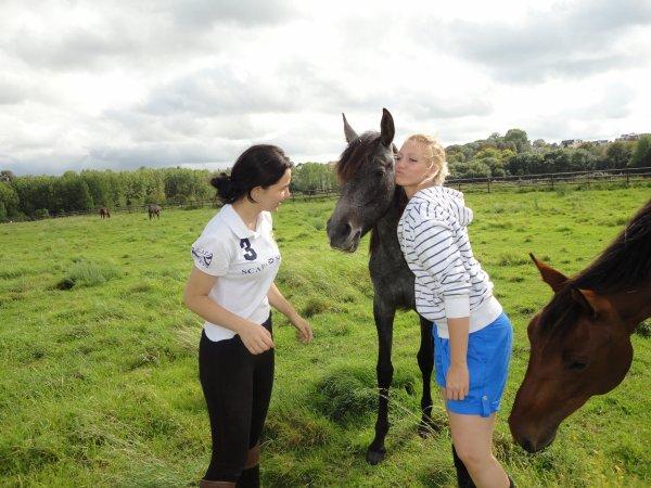 Avec Aukily