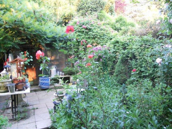 mon jardin aujourd'hui...avant l'orage ou la grêle prévue par météo france