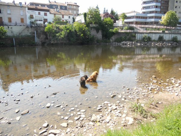 ballade à la Moselle