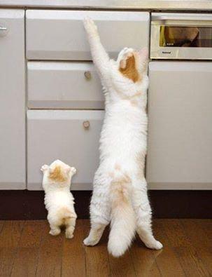 faire comme maman