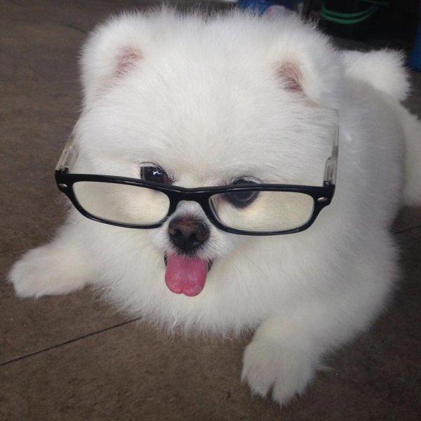 j'ai besoin de lunettes pour lire, quelle pitié!
