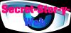 secret-stor-y-web