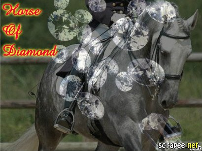 1x07 - Horse of Diamond