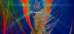 Les récompenses de l annee 2014 (Calypso)