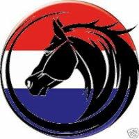Courses 2018 - Reunion 18 - Pays-Bas (8 courses) FINALE