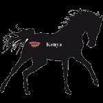 Courses Hippiques 2019 - Reunion 17 - Kenya