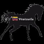 Courses Hippiques 2019 - Reunion 18 - Vénézuéla (Spéciale GME)