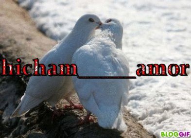 hichamo