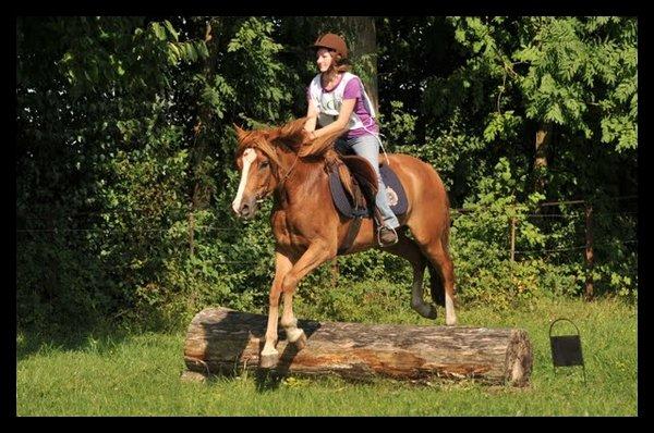 Il était un petit poney qui n'avait ja-ja-jamais galopé Ohé Ohé...