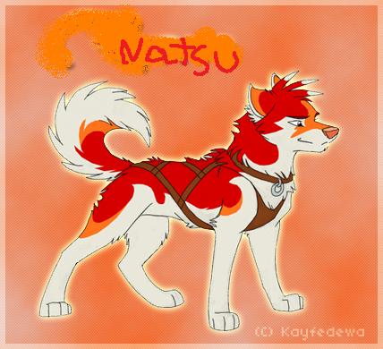 Natsu en loup