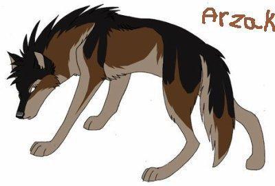 Arzak en loup