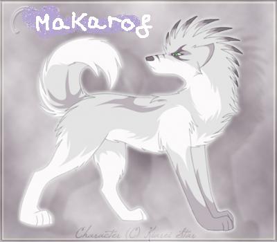 Maitre Makarof en loup