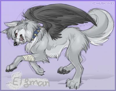 Elfman en loup