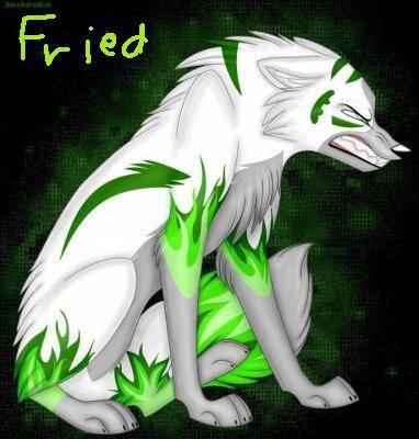 Fried en loup