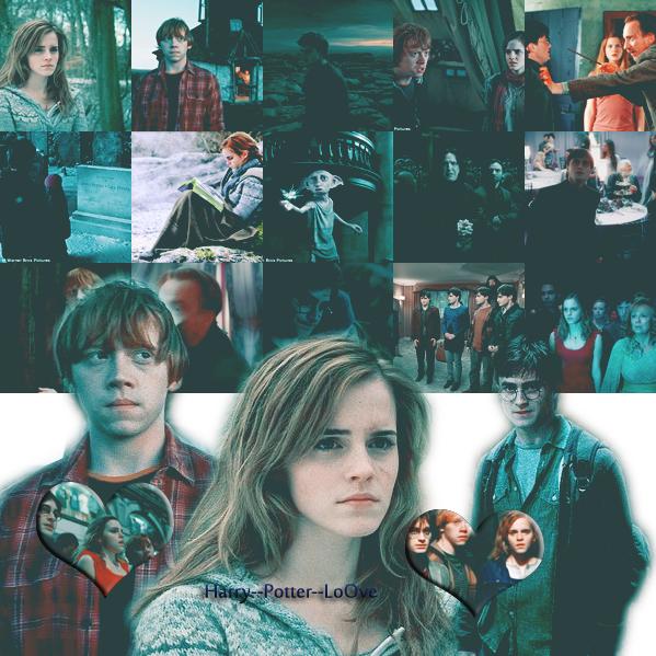 Harry Potter & Les Reliques de la Mort Partie 1