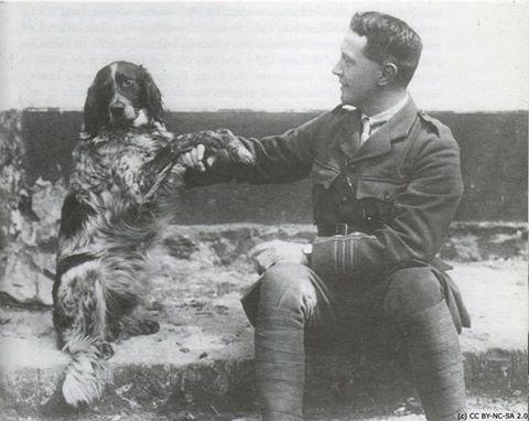 """Poème du 100e anniversaire """"In Flanders Fields""""."""