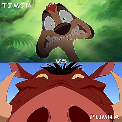 Timon vs Pumba