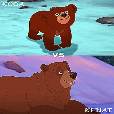 Kenaï vs Koda