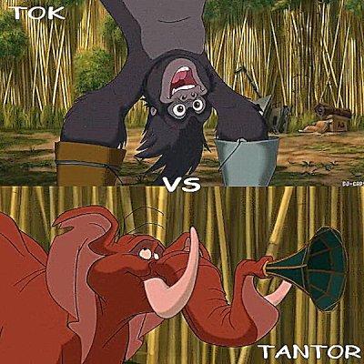 Tantor vs Tok