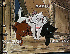 Berlioz , Marie , Toulouse