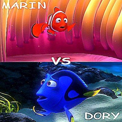 Marin vs Dory