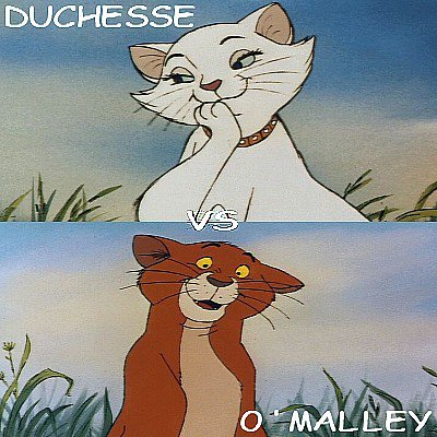 Duchesse vs O'Malley