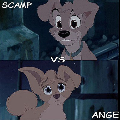 Scamp vs Ange
