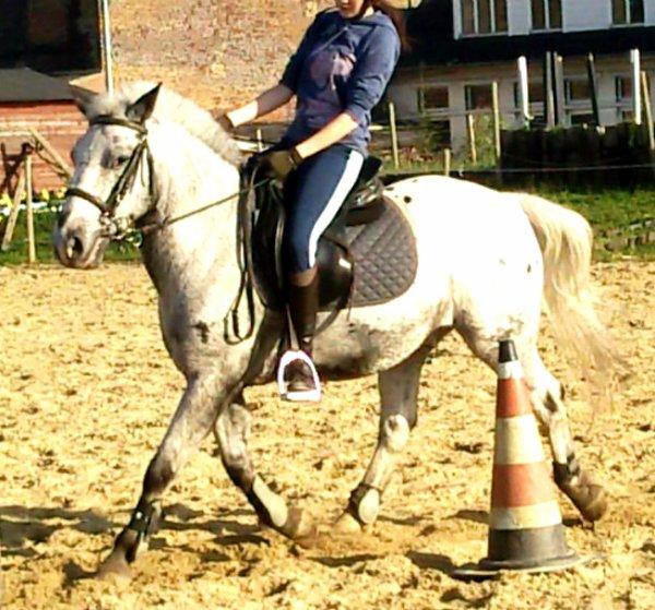 #  « L'equitation c'est écouter son coeur battre a chaque fois qu'on s'approche d'un cheval. »
