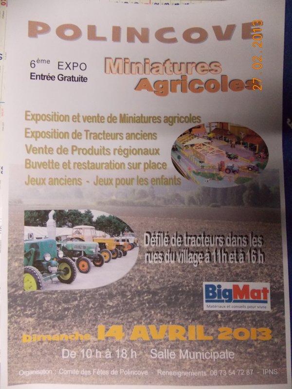 expo polincove 2013