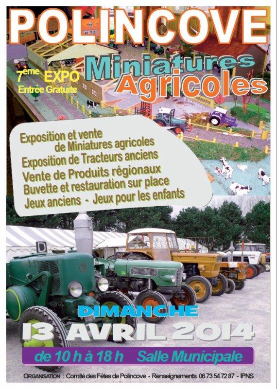 expo polincove 2014
