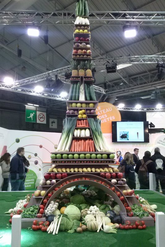 EXPO PARIS 2016