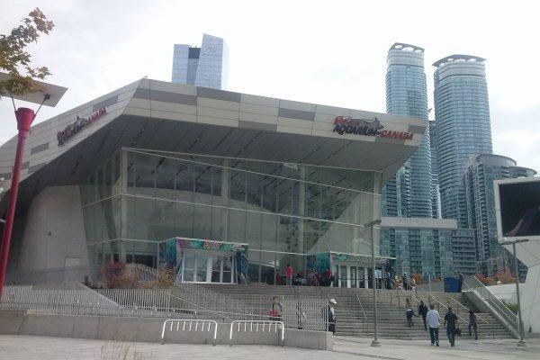 ....Toronto aquarium....