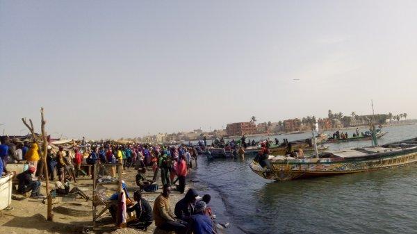Port de saint louis