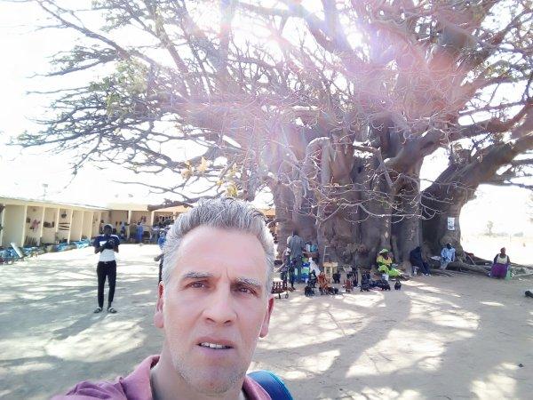 Baobab...35m de circonférence