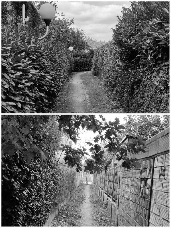 Chemins