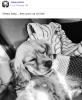 Facebook - Tokio Hotel (25 Juillet)