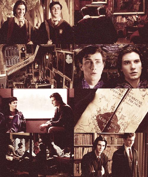 Chapitre 2 - L'arrivée chez les Potter