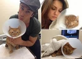 Ian ,Nina et leur chat :(