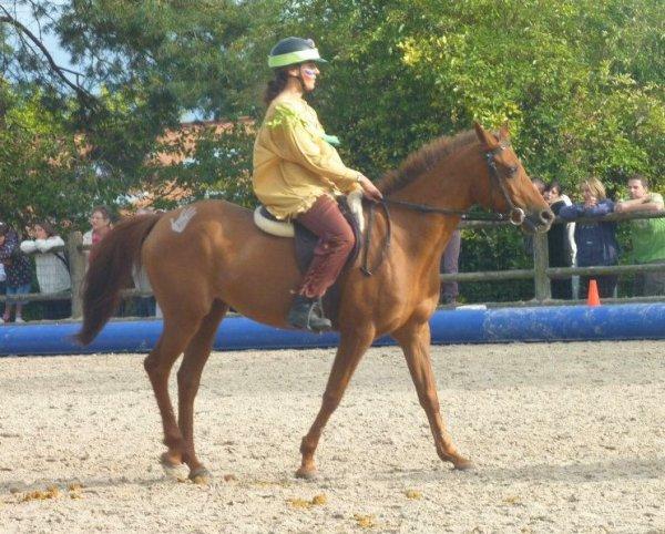 Dimanche 18 Septembre: La fête du cheval !
